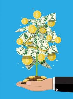 Árbol de dinero en mano.