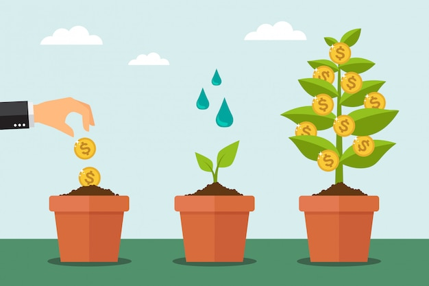 Árbol de dinero y proceso de crecimiento financiero