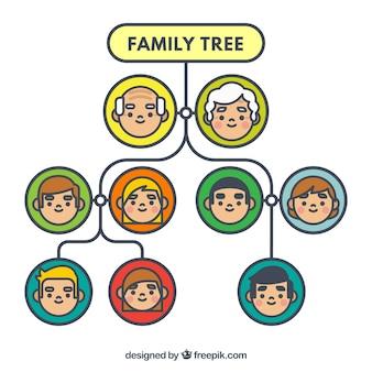 Árbol de familia decorativo con círculos en diferentes colores