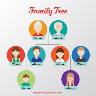 Árbol familiar plano con círculos de color en diseño plano