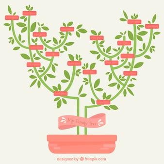 Árbol genealógico minimalista en diseño plano