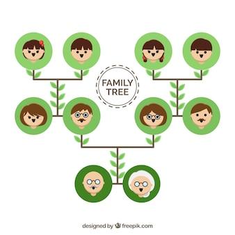 Árbol genealógico plano con círculos verdes