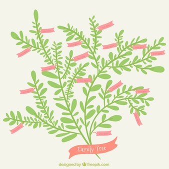 Árbol genealógico plano con etiquetas rosas