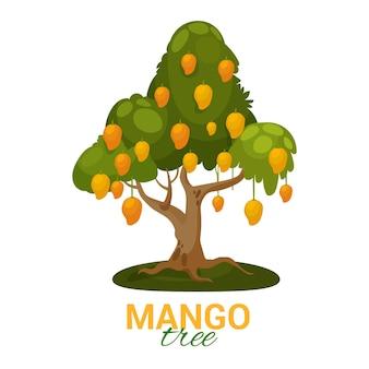 Árbol de mango con frutas y hojas ilustradas