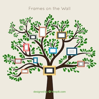 árbol con marcos en la pared