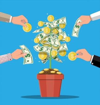 Árbol de monedas de dinero. árbol de dinero en crecimiento.