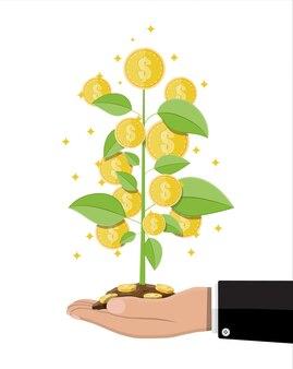 Árbol de monedas de dinero en mano del empresario
