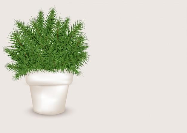 Árbol de navidad realista en una maceta blanca