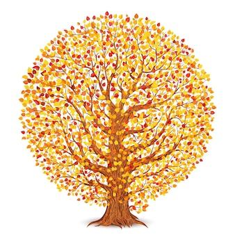 Árbol de otoño con hojas amarillas y rojas aisladas en blanco