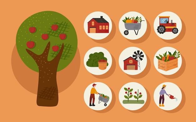 Árbol y paquete de nueve iconos agrícolas y agrícolas, diseño de ilustraciones vectoriales