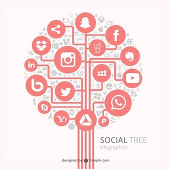 Árbol social