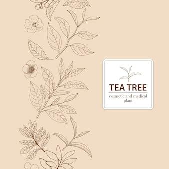 Árbol de té. vector fondo herbario dibujado a mano