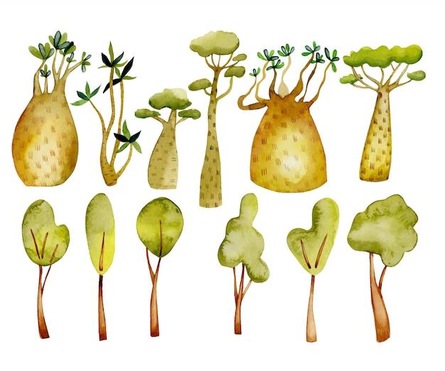 Arboles acuarelas, baobabs tropicales y elementos florales.