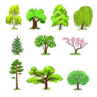 Árboles de hoja caduca en cuatro estaciones.