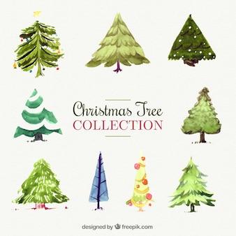 árboles de navidad decorativos pintados con acuarela