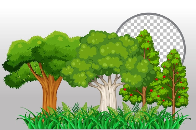 Árboles de variedad sobre fondo transparente