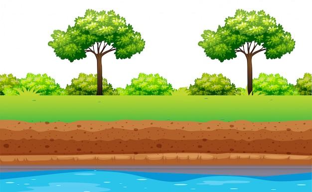 Árboles verdes y arbustos a lo largo del río.