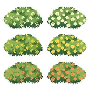 Arbusto con hermosas flores.