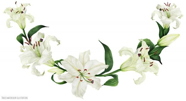 Arco tropical de acuarela floral con lirios blancos orientales