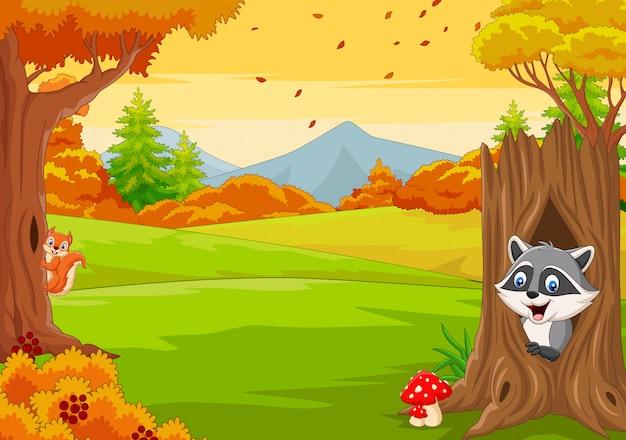 Ardilla de dibujos animados con mapache en el bosque de otoño