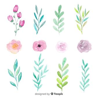 Arreglo de flores y hojas sobre fondo blanco.