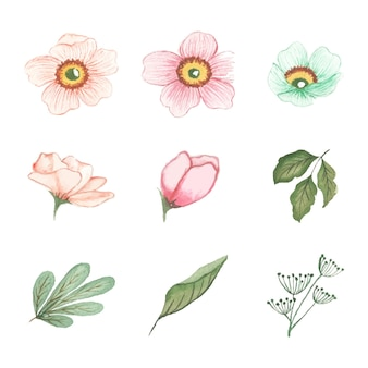 Arte floral acuarela hecho a mano