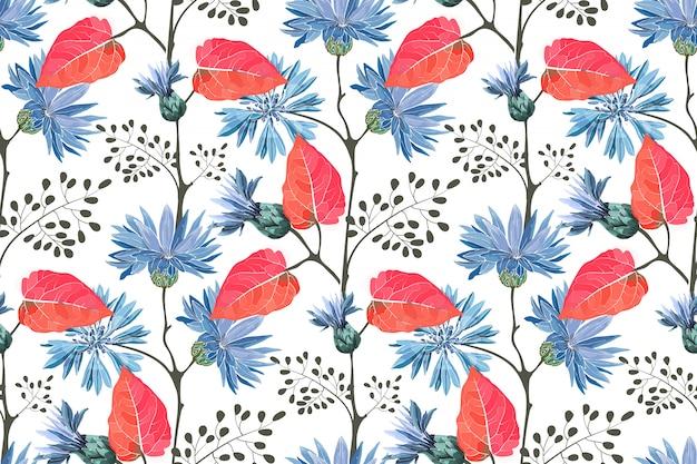 Arte floral de patrones sin fisuras. floración azul aciano, flores de centaurea con brotes, tallos, ramitas, hojas rojas aisladas sobre fondo blanco.