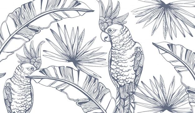 Arte de línea de tarjeta de loro. exóticas decoraciones de hojas de palma. fiesta de verano