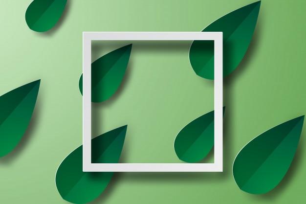 Arte de papel del marco con la hoja verde, banderas, blanco, vector
