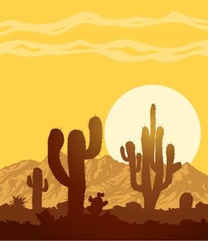 Atardecer en piedra desierto con cactus.