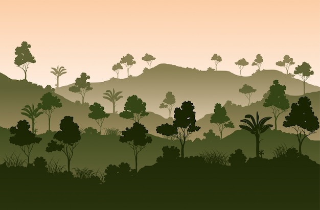 Atmósfera paisajística de los árboles tropicales