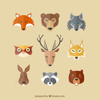 Avatares animales graves planas