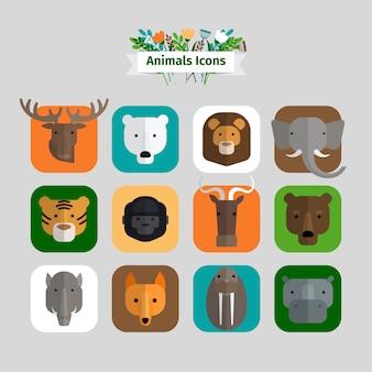 Avatares de animales