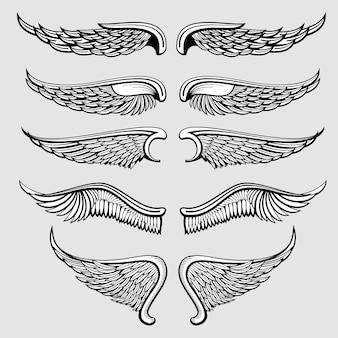 Aves heráldicas, alas de ángel conjunto de vectores
