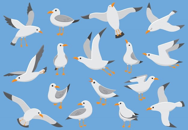 Aves marinas, ilustración vectorial de dibujos animados de gaviota