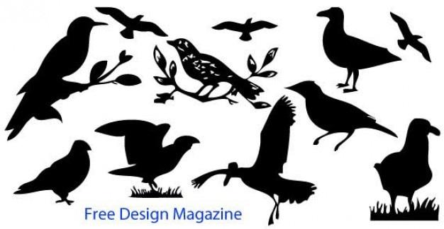 Aves silueta vectoriales sin