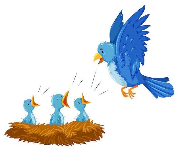 Aves y sus crías en el nido.