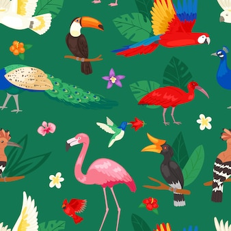 Aves tropicales loro exótico o flamenco y pavo real con hojas de palmera ilustración conjunto de moda birdie ibis o hornbill en floración fondo tropical