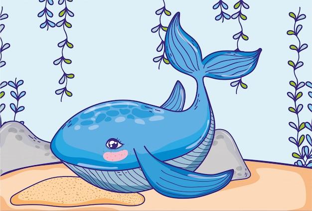 Ballena animal con plantas de algas marinas colgando.