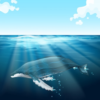 Ballena nadando bajo el mar azul