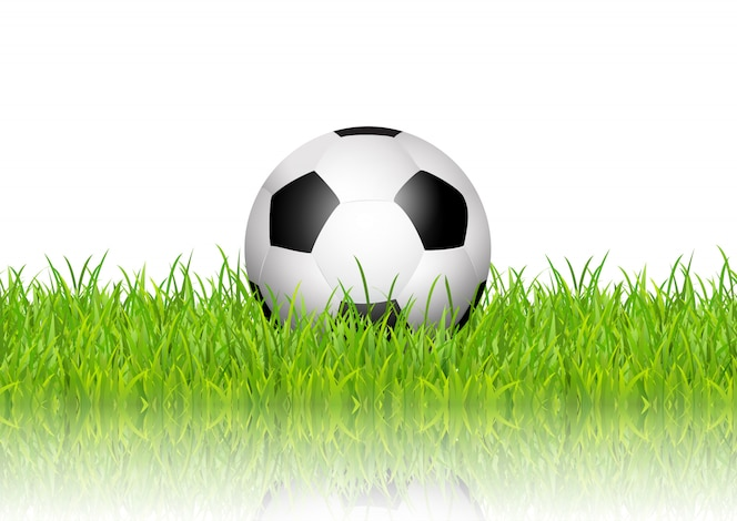 Balón de fútbol en pasto sobre fondo blanco