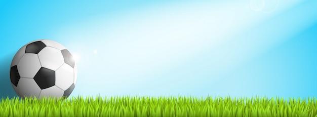 Balón de fútbol en la hierba con sol en él
