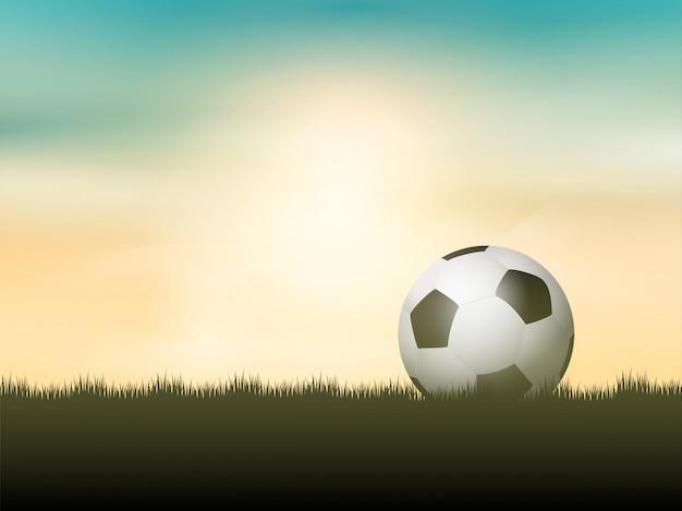 Balón de fútbol o fútbol ubicado en el césped