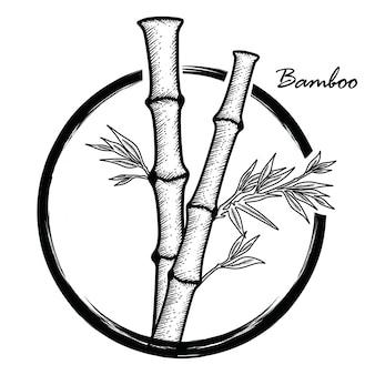 Bambú dibujado a mano