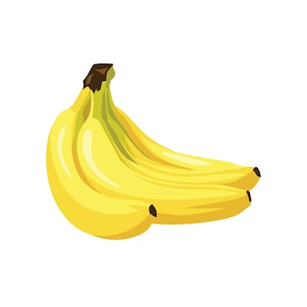 Banana fruit fresh realistic