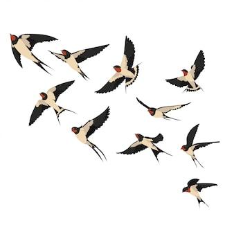 Una bandada de golondrinas voladoras. ilustración de golondrinas de dibujos animados para niños.