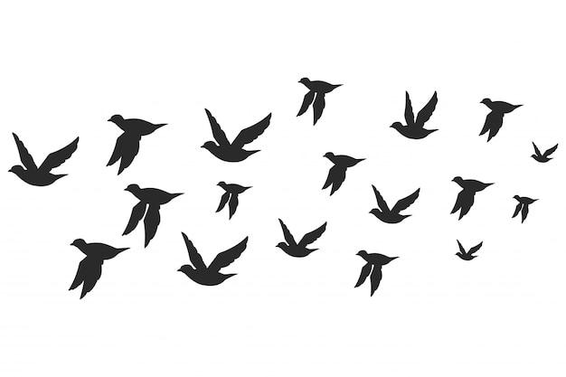 Bandada de palomas o palomas de silueta negra en vuelo.