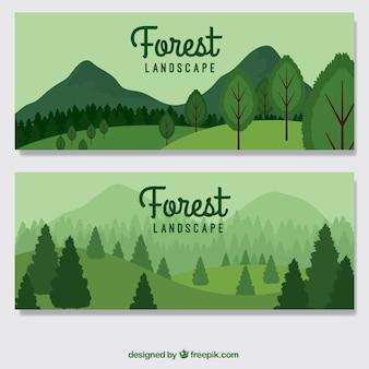 Banderas del bosque verde dibujados a mano