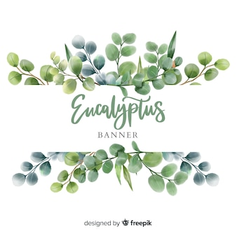 Banner en acuarela de hojas de eucalipto