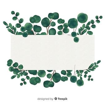 Banner en blanco de eucalipto en acuarela